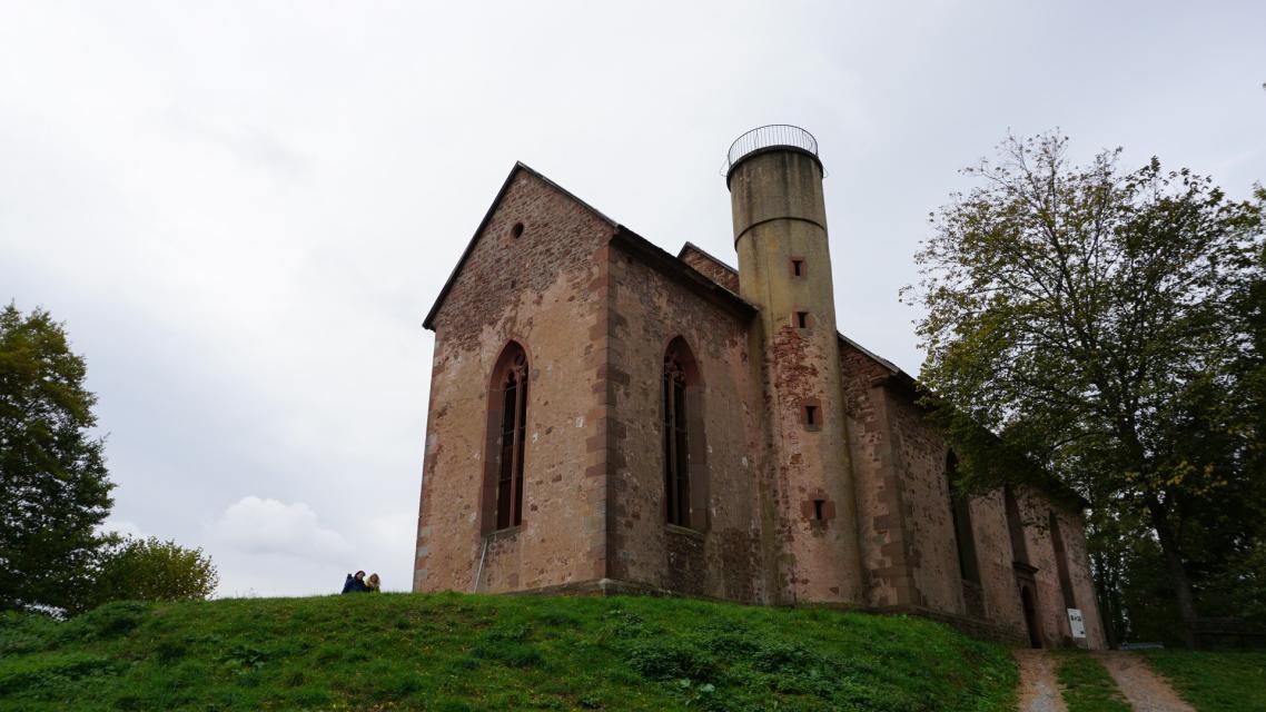 Die gut erhaltene Ruine auf dem Gotthardsberg thront hoch über Amorbach.