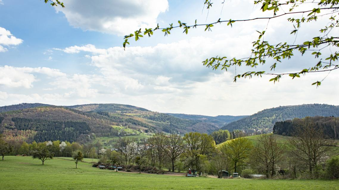 Landschaft rund um Eberbach