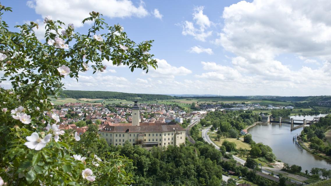 Ausblick auf Schloss Horneck und Altstadt von Gundelsheim