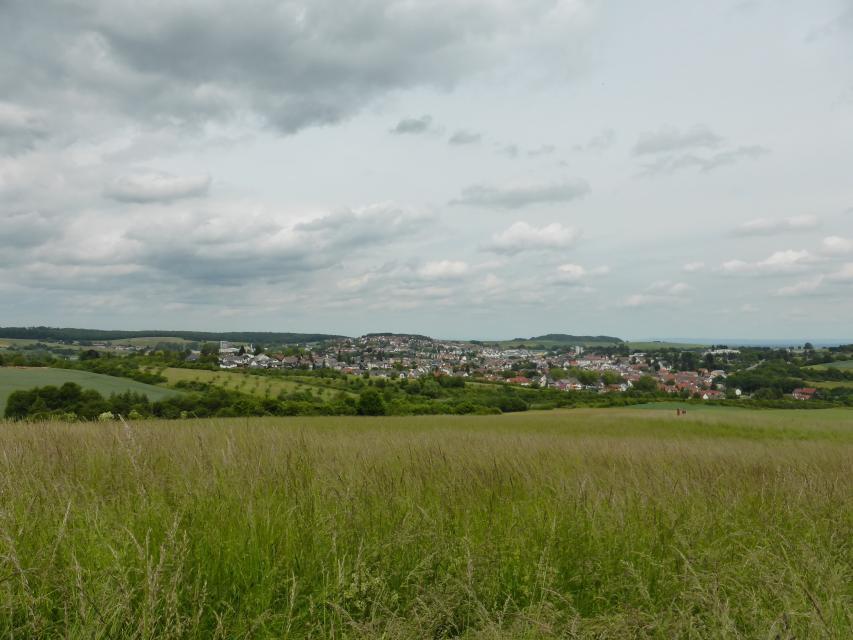 Blick auf Ober-Ramstadt