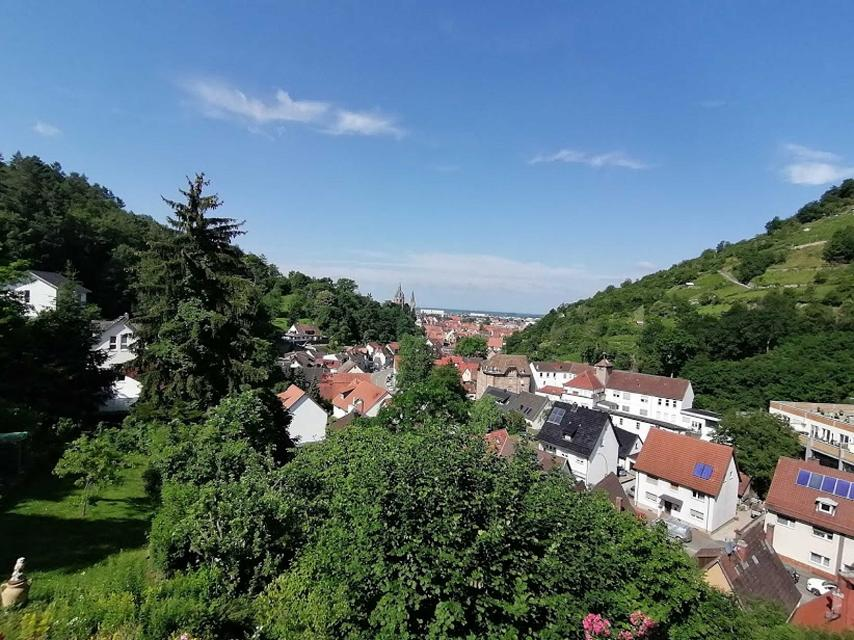 Blick Richtung Heppenheim und in die Rheinebene