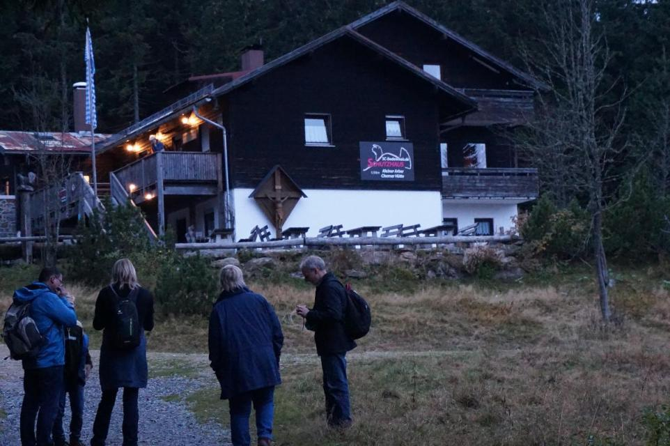 Abendliche Hochwald-Tour