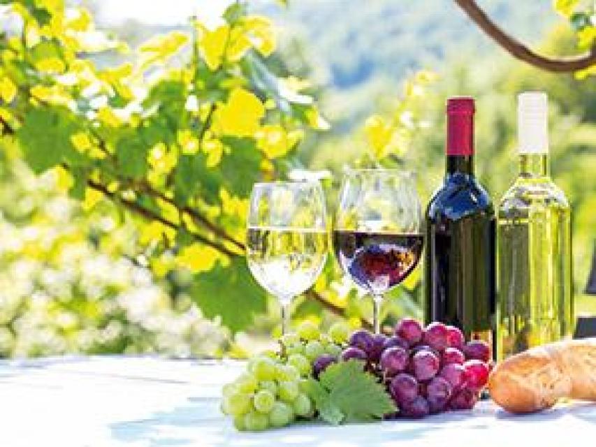 Bodenmaiser Weinfestival bei JOSKA