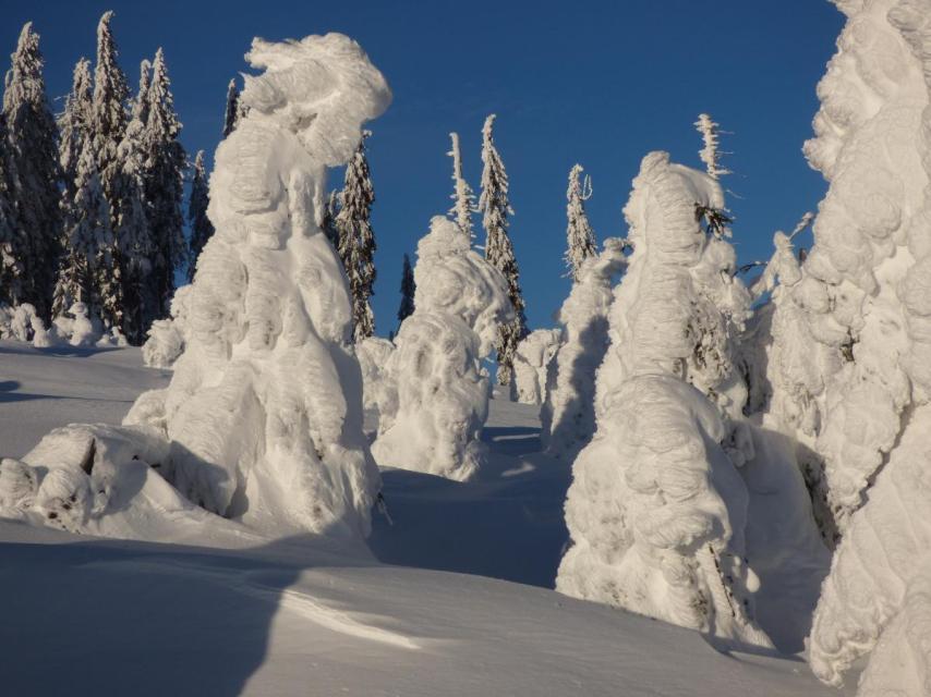Schneeschuh -Arbermandl - Tour