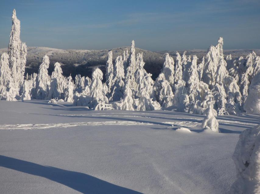 Schneeschuh - Kaiser Tour
