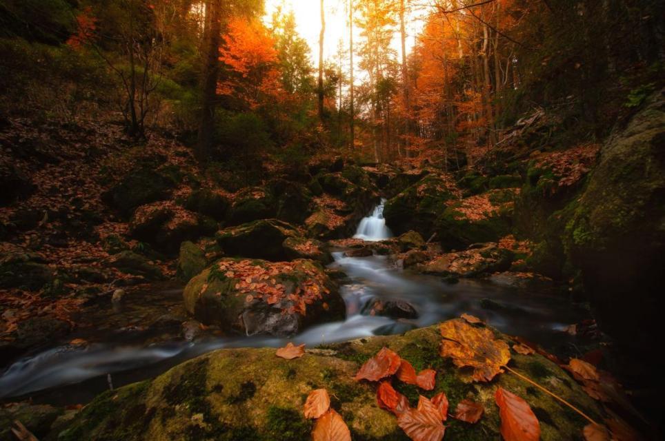 """""""Wildes Wasser"""" Wasserfall-Tour"""