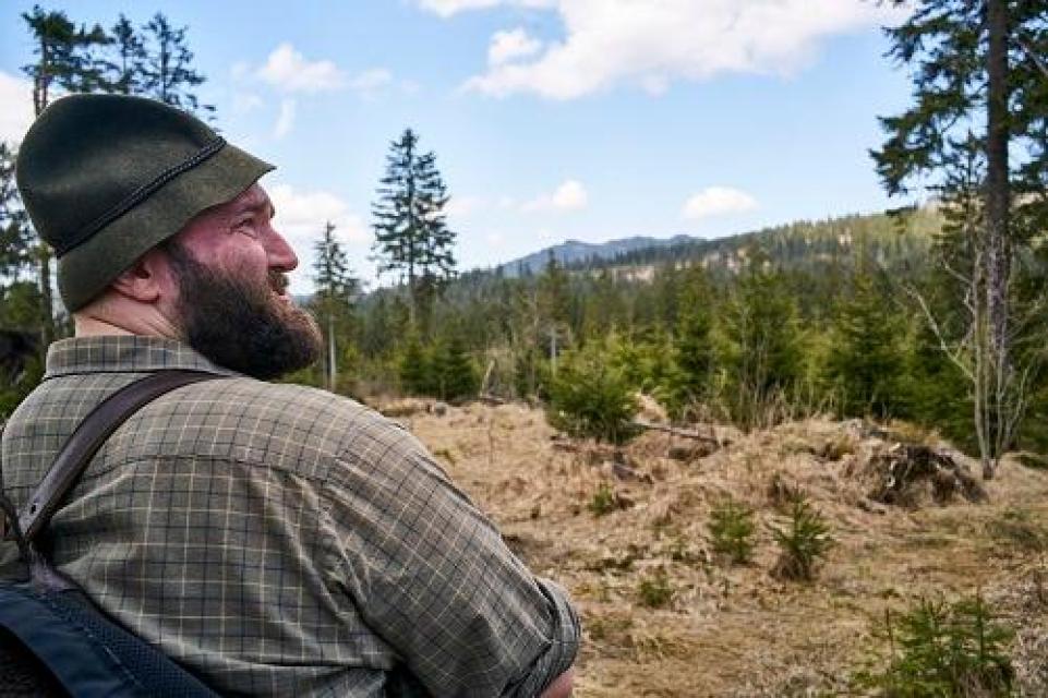 Der Wald erwacht mit Woid Woife