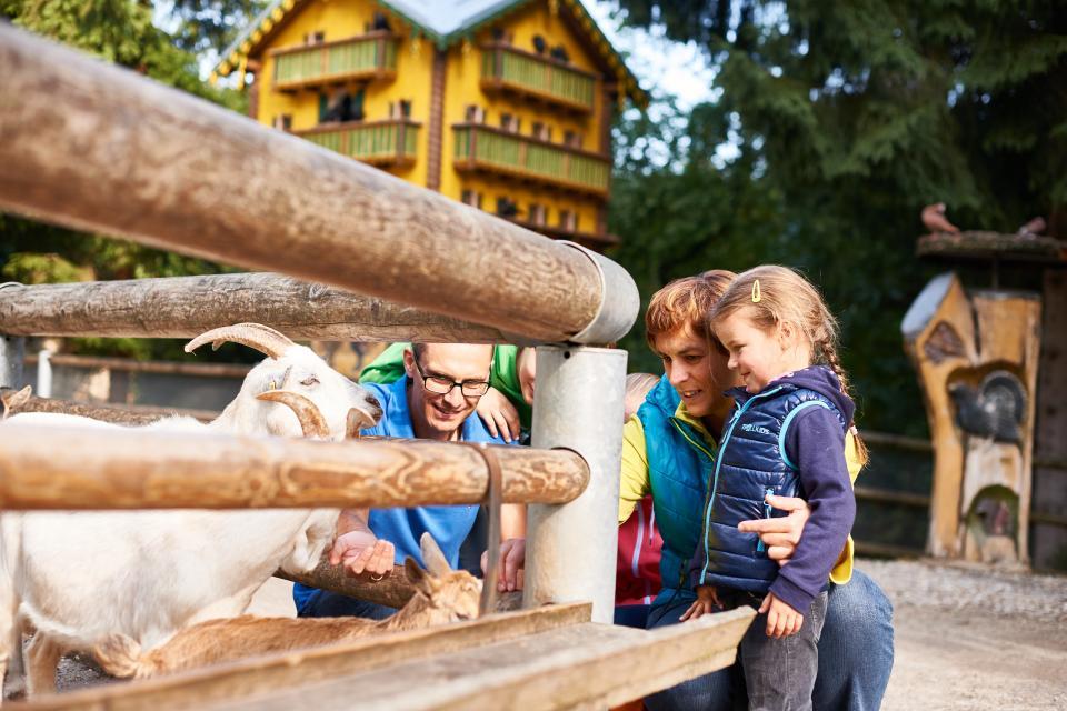 Bayerwald -Tierpark Lohberg