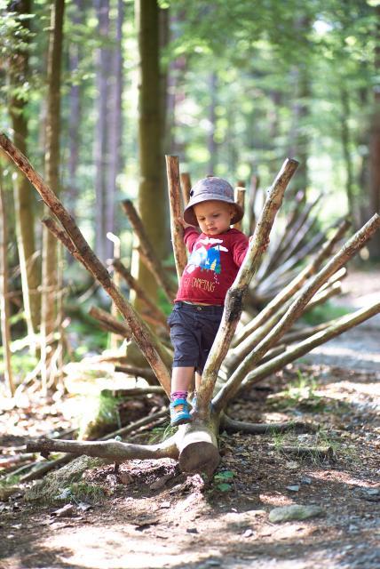 Ameisenstrasse - Kinderwanderweg