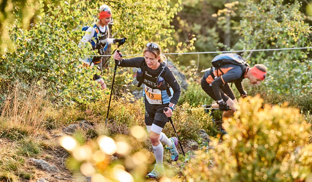 König Arber Trailrun - auf den Spuren des Auerhahntrails