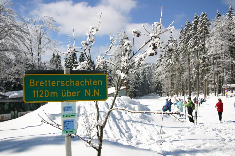 Bodenmais Wintersport