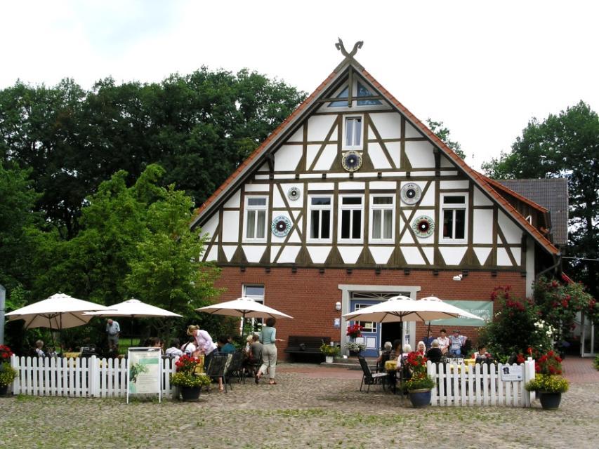 FloraFarm Ginseng-Café