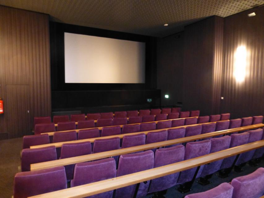 walsrode kino