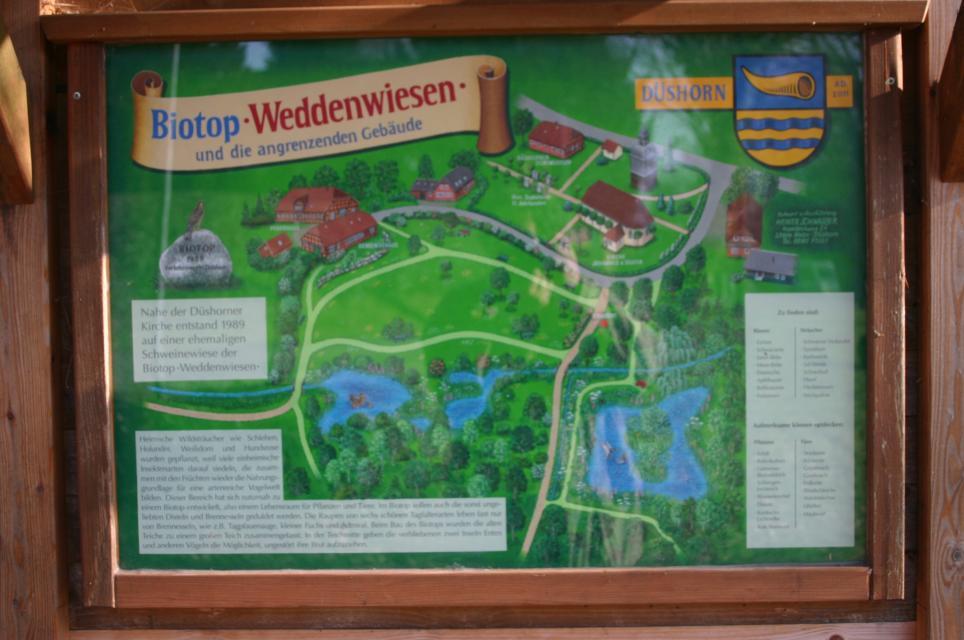 Biotop und Obstbaumwiese Düshorn