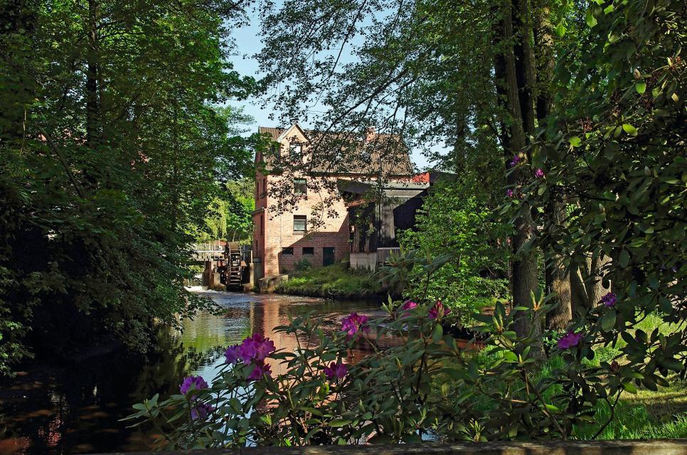 Bibliothek Waldmühle