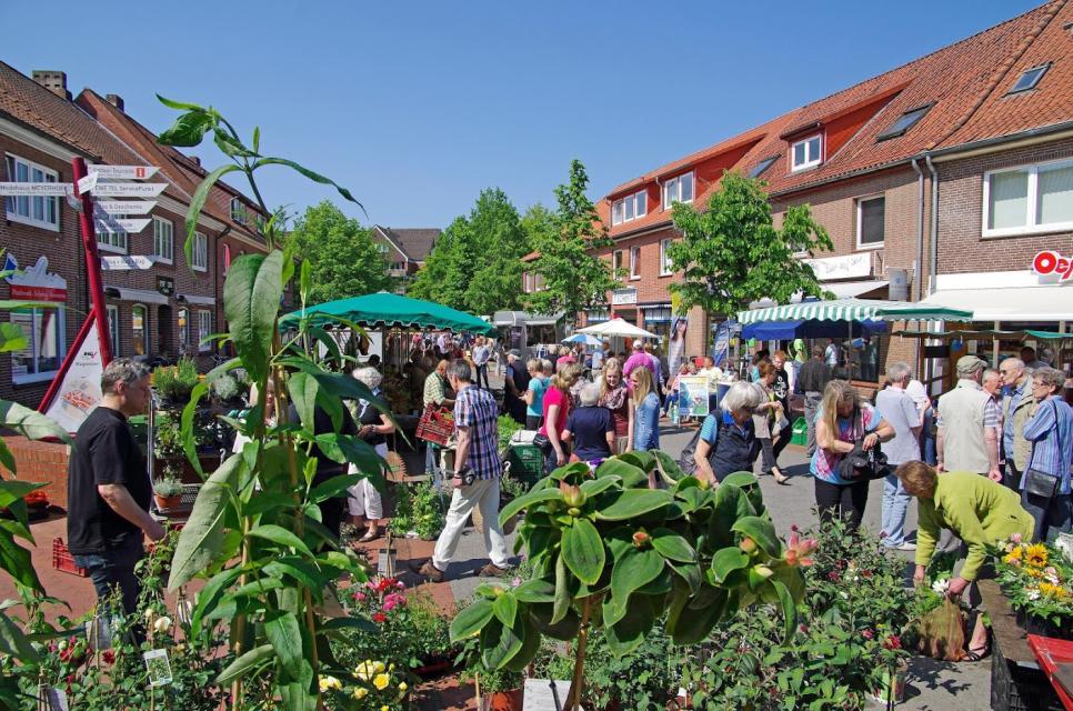Der Soltauer Wochenmarkt