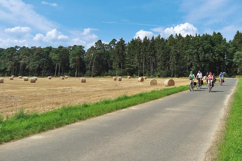 Leine-Heide Radweg