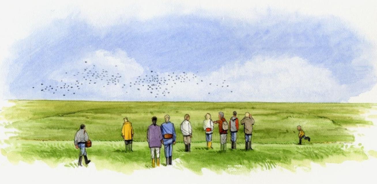 """""""Watt zum Land"""" – ein Spaziergang durch Bensersiel"""