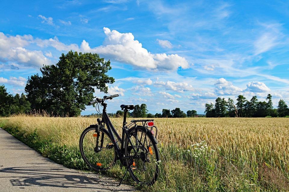 Geführte Fahrradtouren um Esens und Bensersiel