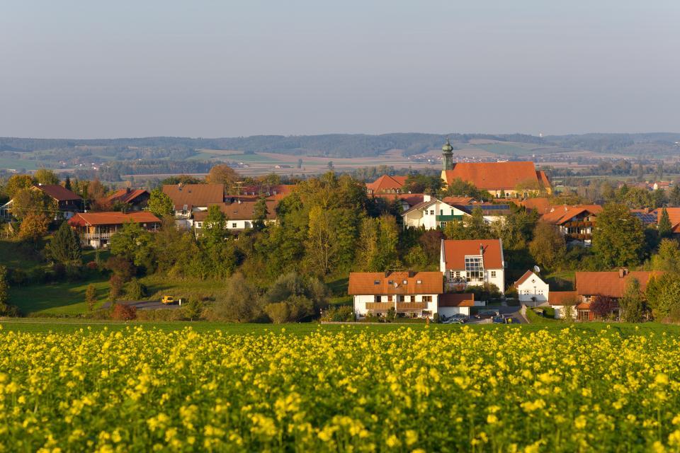 Niederviehbach