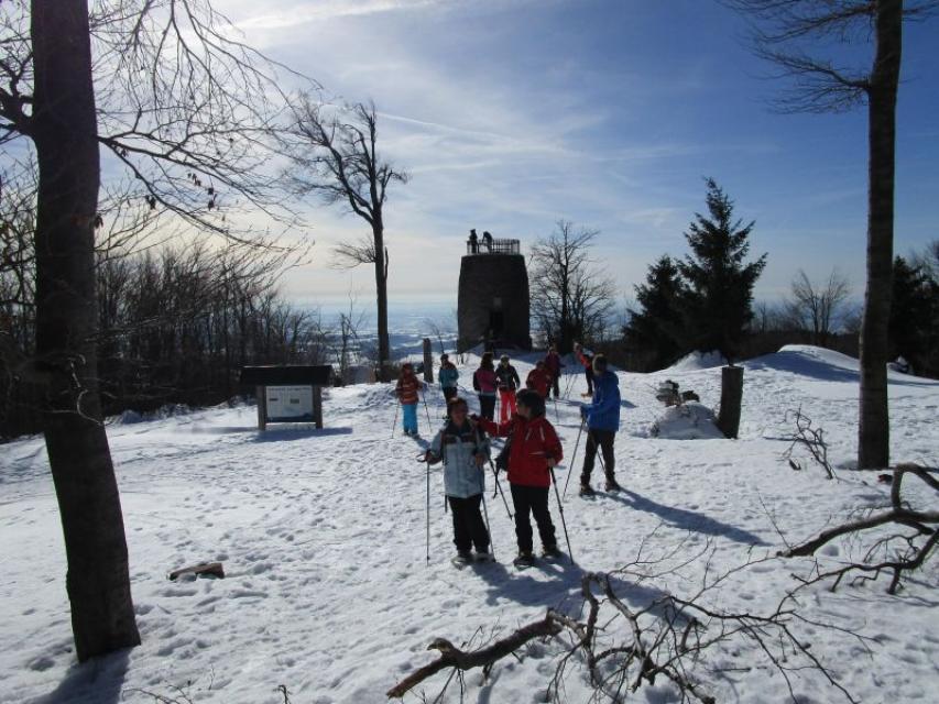 Schneeschuhwanderungen rund um den Hirschenstein
