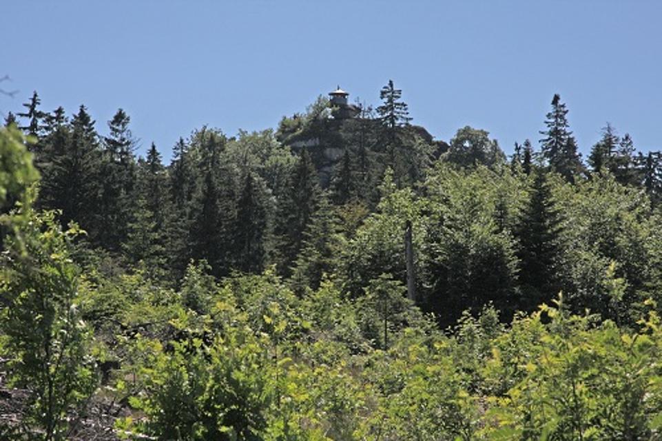 Blick auf den Waldstein