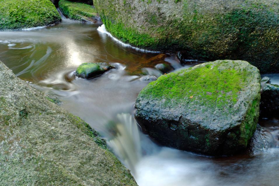 Natur pur im Fichtelgebirge
