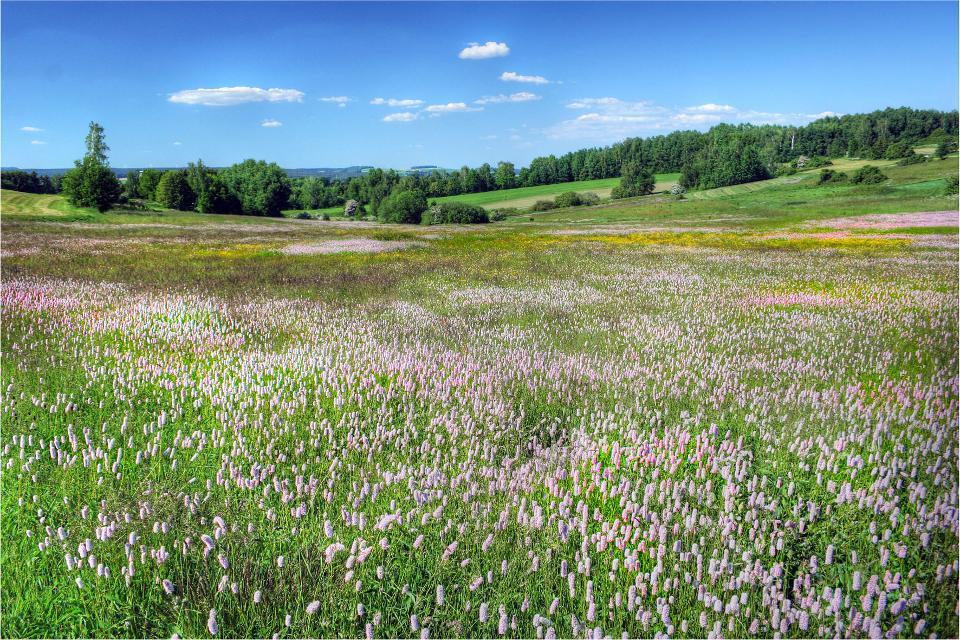 Landschaft Fichtelgebirge