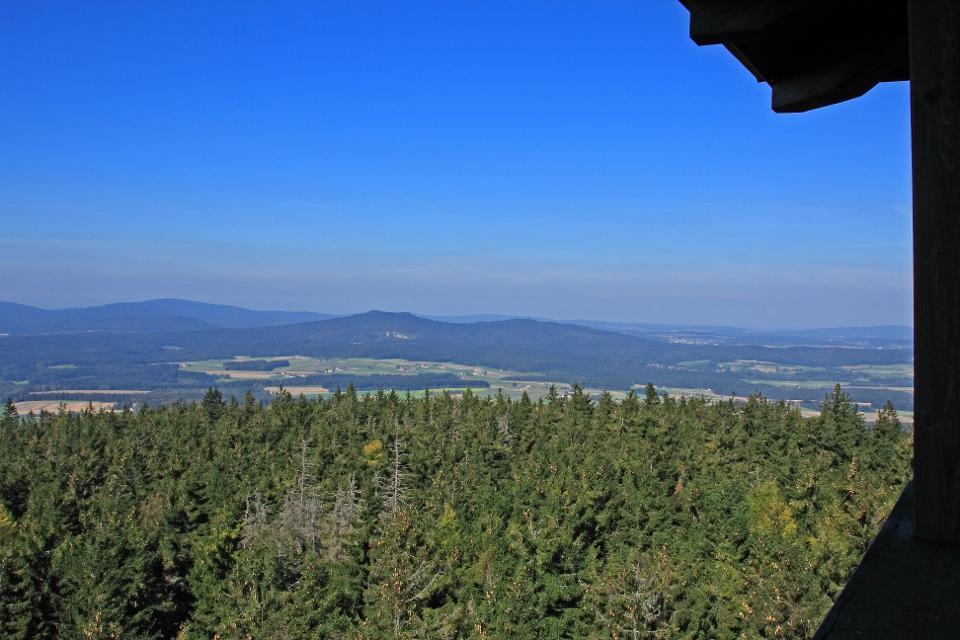 Blick auf Steinwald Platte