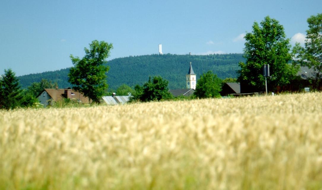 Blick zum Kornberg