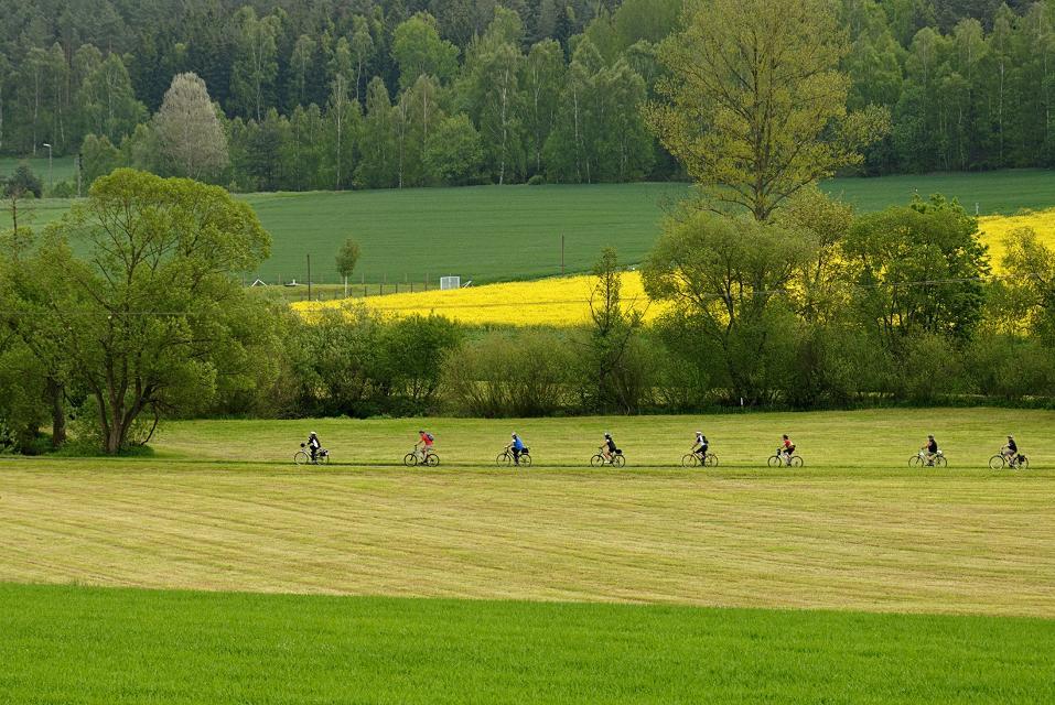 Radfahrer im Fichtelgebirge