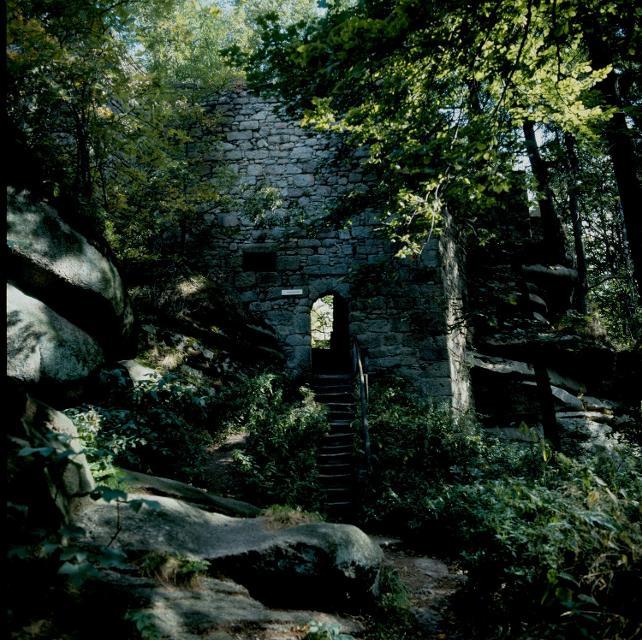 Burgruine Rotes Schloss bei Zell im Fi.geb.