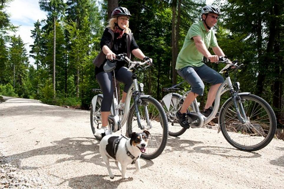 E-Biker mit Hund