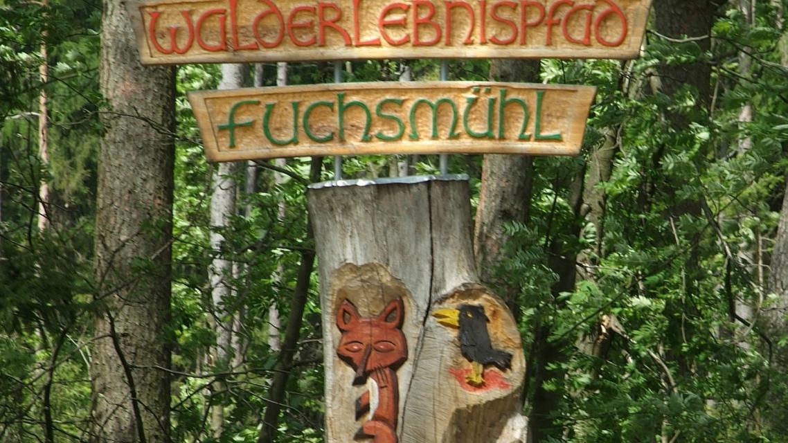 WaldErlebnispfad Fuchsmühl
