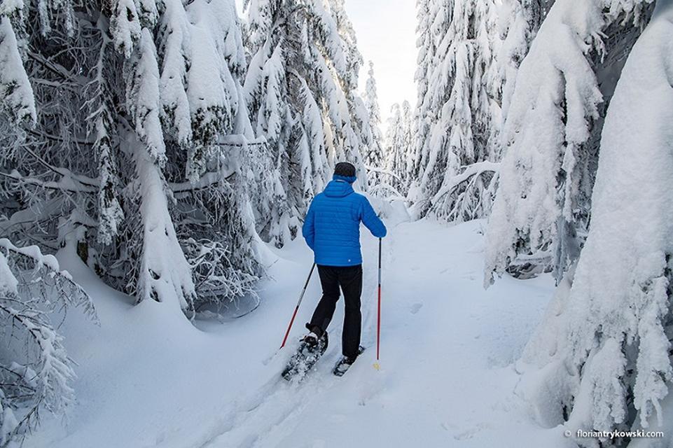 Schneeschuh-Wanderer