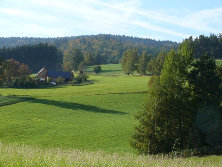 Landschaft Bärnhöhe