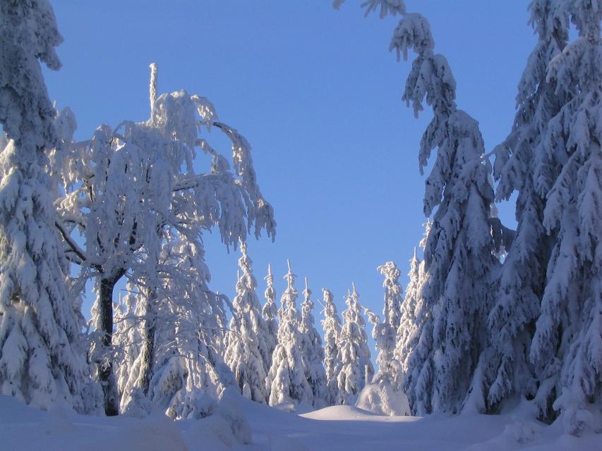 Winterwandern im Fichtelgebirge