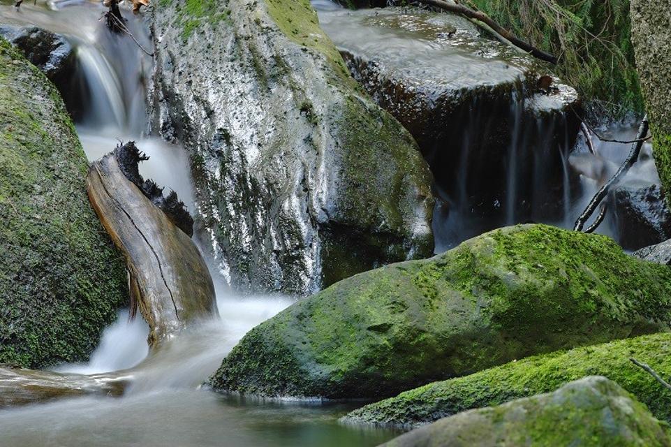 Naturparadies Fichtelgebirge