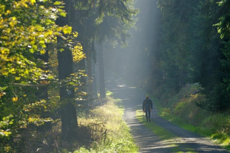 Nordic-Walking im Fichtelgebirge