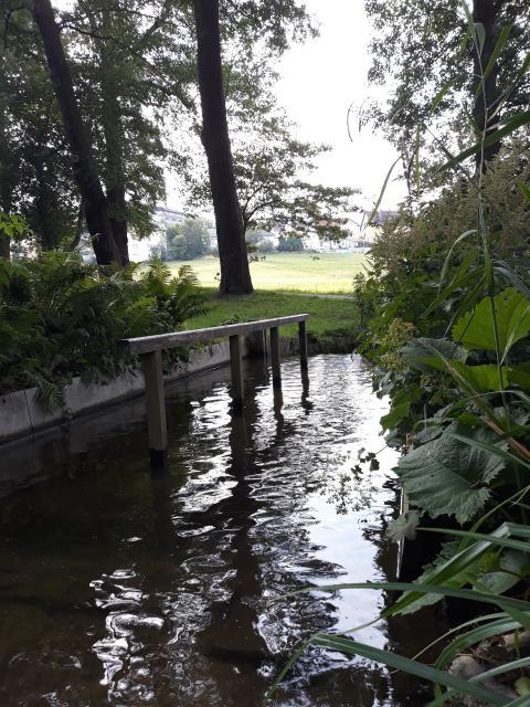 Natur-Wassertretanlage im historischen Kurpark Bad Alexandersbad