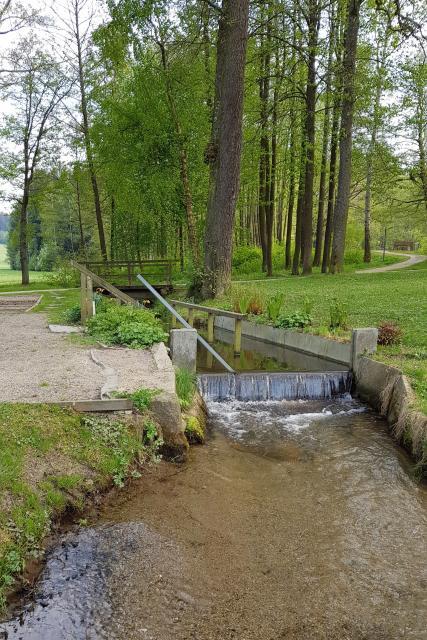 Natur-Kneipp-Becken im historischen Kurpark