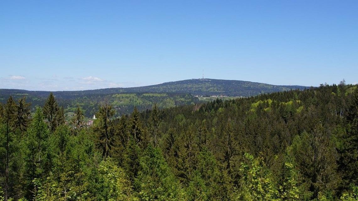 Tour zum Wurzbachweiher und zum Schanzberg