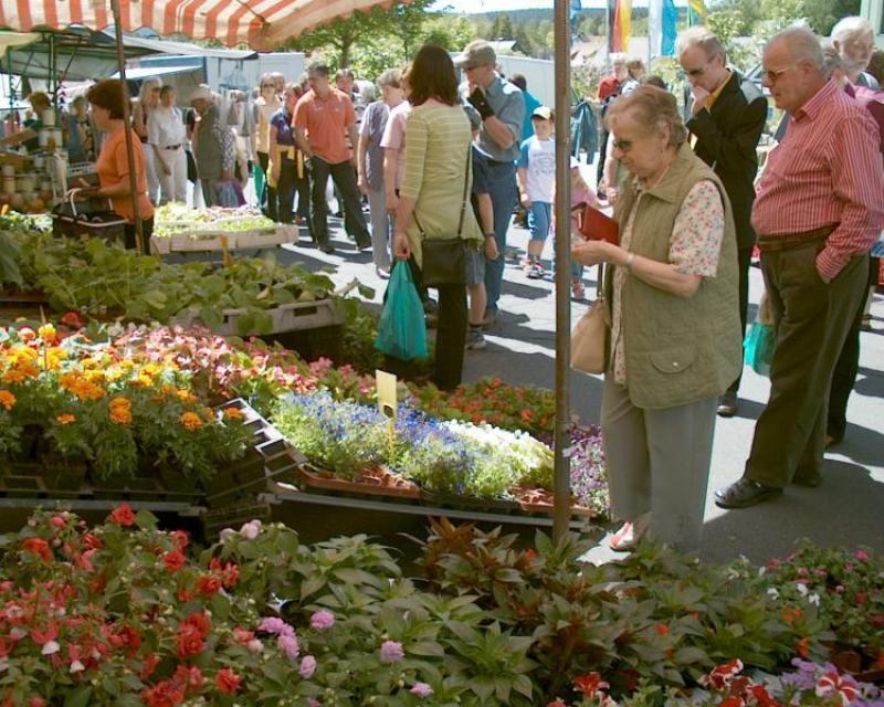 Fichtelberger Pfingstmarkt am 50.Breitengrad