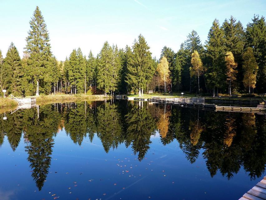Natur-Moorbad in Fleckl