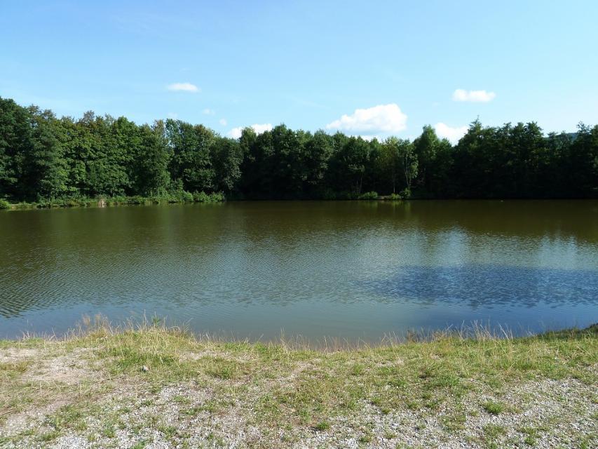 Großer Kießweiher Waizenreuth