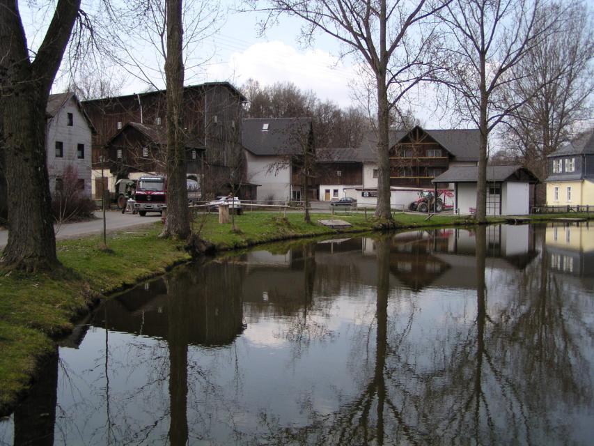 Dorfweiher Thölau