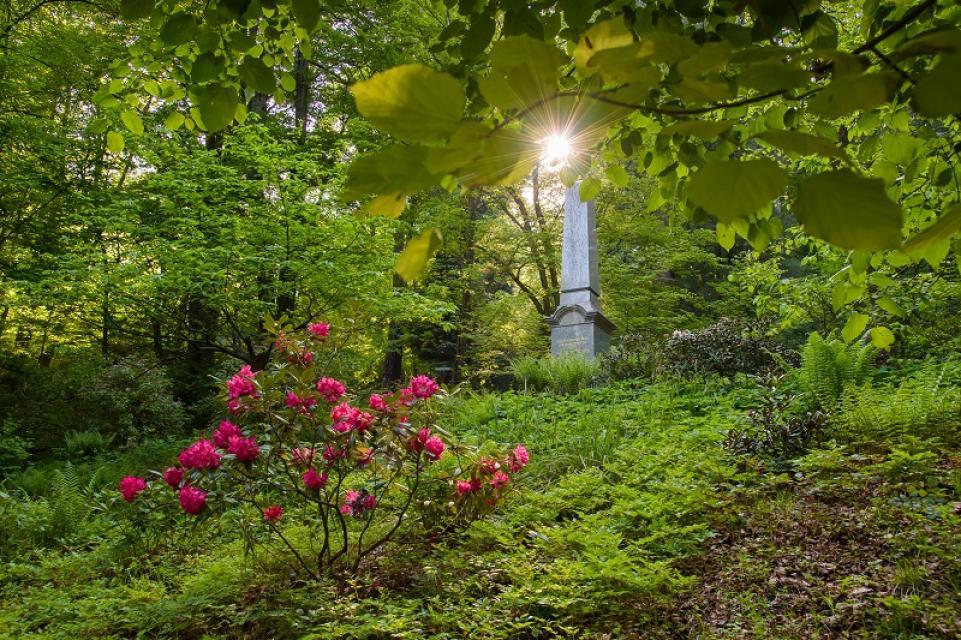 Der Dendrologische Garten in Bad Berneck - ein Kleinod für Bäume aus aller Welt