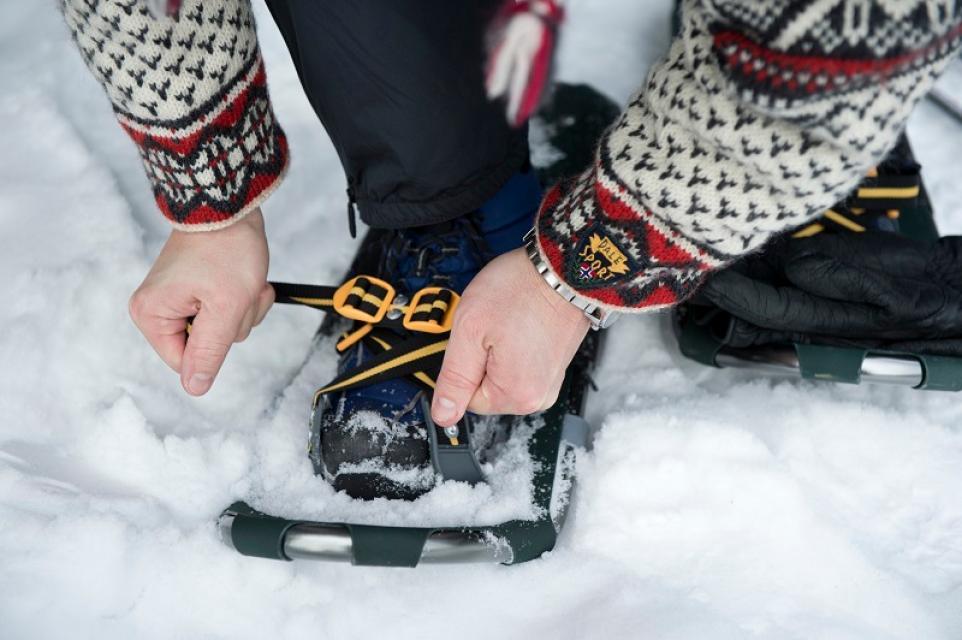 Bischofsgrüner Schneeschuhwanderungen