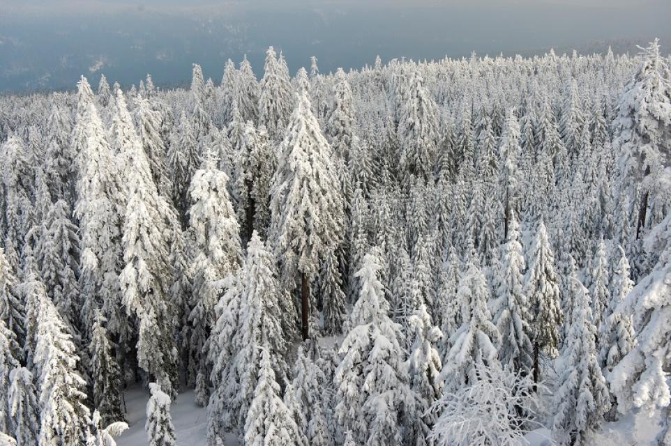 Schneeschuhtouren Marktredwitz