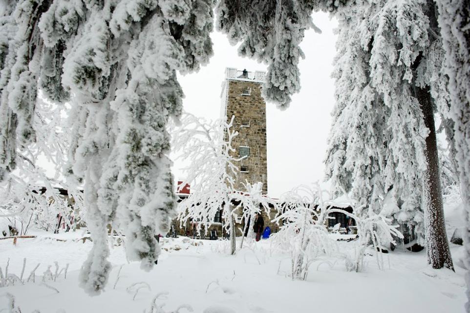 Schneeschuhwandern mit Markus Prechtl